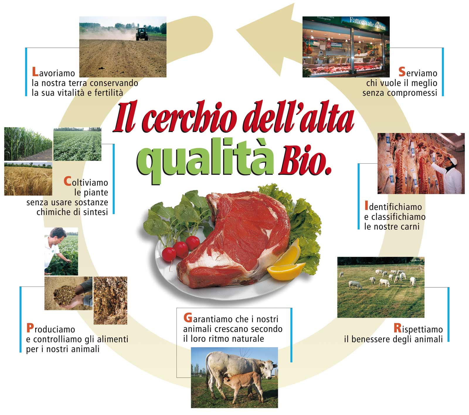 cerchio-qualita-bio-fattoria-alle-origini